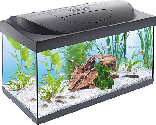 Tetra Starter Line LED Acuario 54 L - Juego completo que incluye iluminación LED, un acuario...