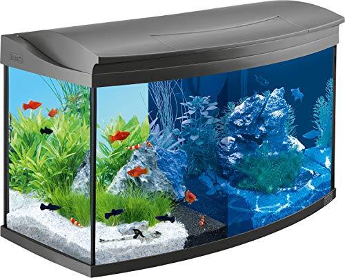 Tetra AquaArt Evolution Line LED Acuario 100 L - Set completo (incluso illuminazione a LED,...