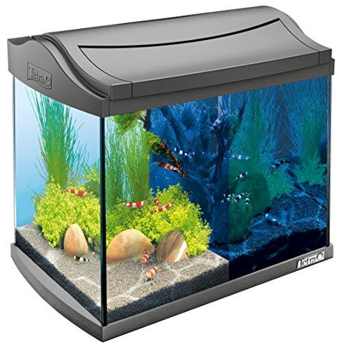 Tetra AquaArt Discovery Line - Set completo de acuario con luz LED, 20 litros, color antracita...