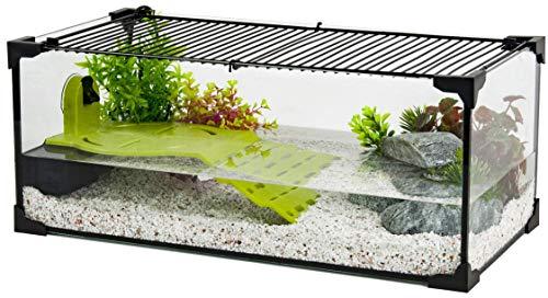 Zolux - Acuario acuario para tortuga de agua (50 cm)