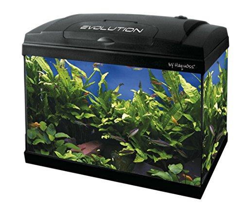 Haquoss, Evolution 40 - Acuario de 40 x 25 x 34 cm, 21 litros, con luz LED de 4 W, versión Luxury,...