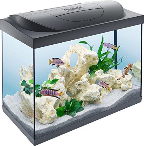 Tetra Starter Line LED Acuario 80 L - Juego completo que incluye iluminación LED, un acuario...